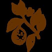 植物03.png