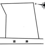 土地 地形図