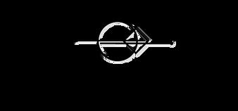 ErgoSense-logo-bw-46.png