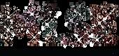 5e160b82496c01b3f02fe168_MLSE_logo.png