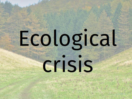 British ecological crisis: is there a solution?