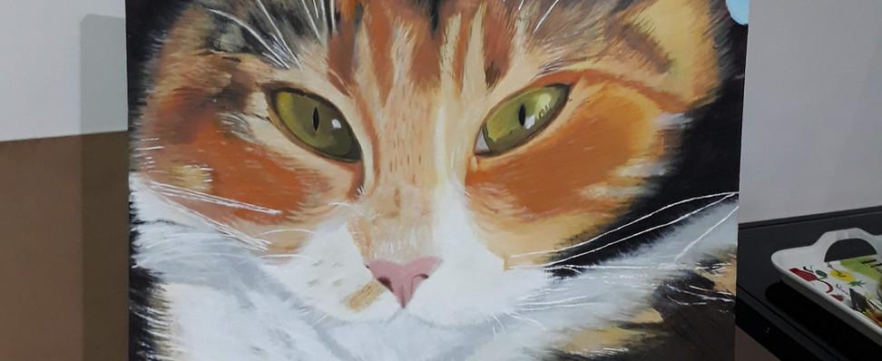 gato en óleo