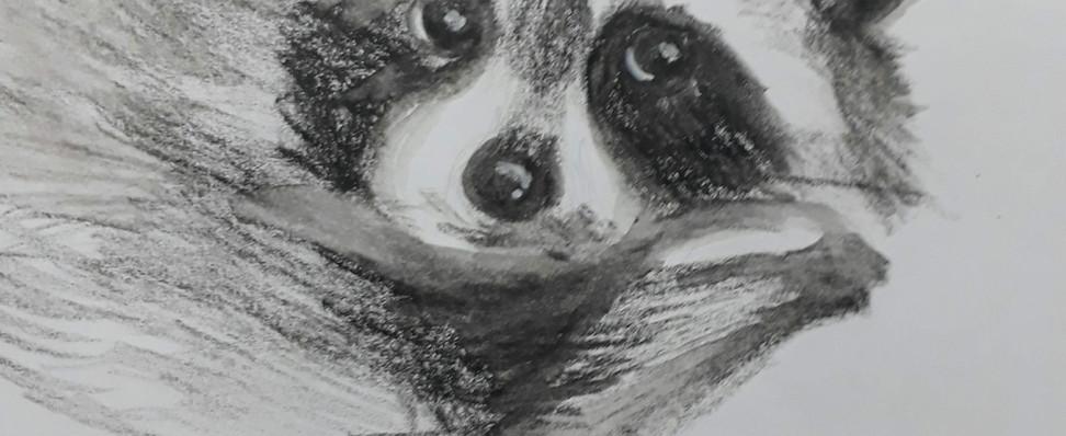 dibujo carboncillo