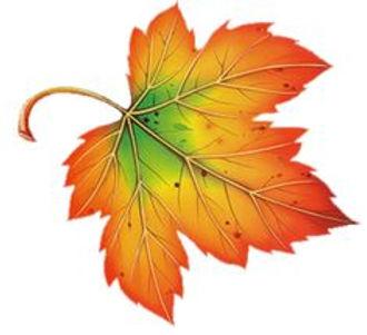 fall-leaves-clip-art-30.jpg