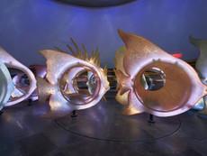 06-seaglass-fishmotion-0185.jpg