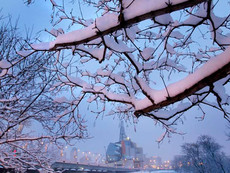 march-2-2012-snow-picture.jpg