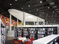 11-chinatown-library-11-c-hedrich-blessing.jpg