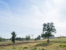 04-grace-farms-sanaa-5387-c-iwan-baanjp