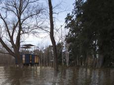 04-4-inundation.jpg