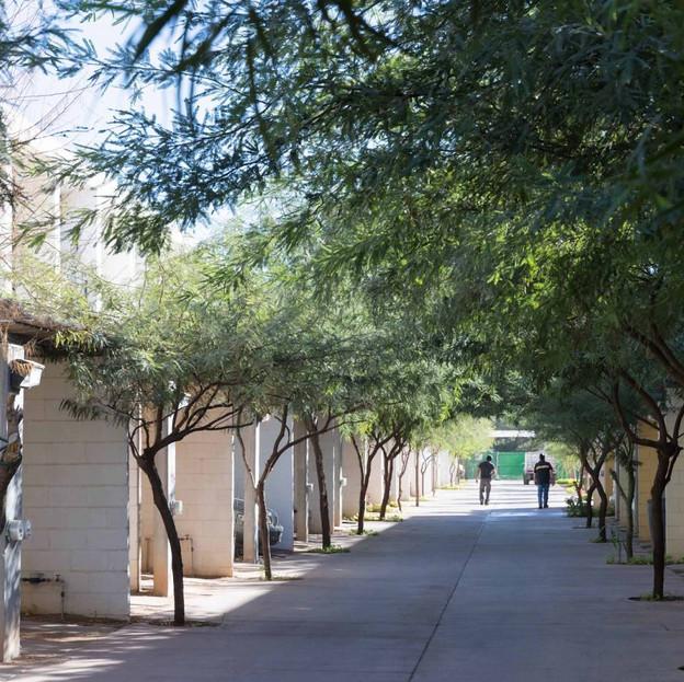 Hermosillo Social Housing