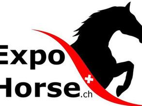 Stiftung und Verein Pro Pferd an der ExpoHorse