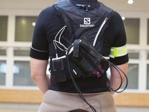 Rückengesundheit der Schweizer Pferdepopulation - eine Übersichtsstudie