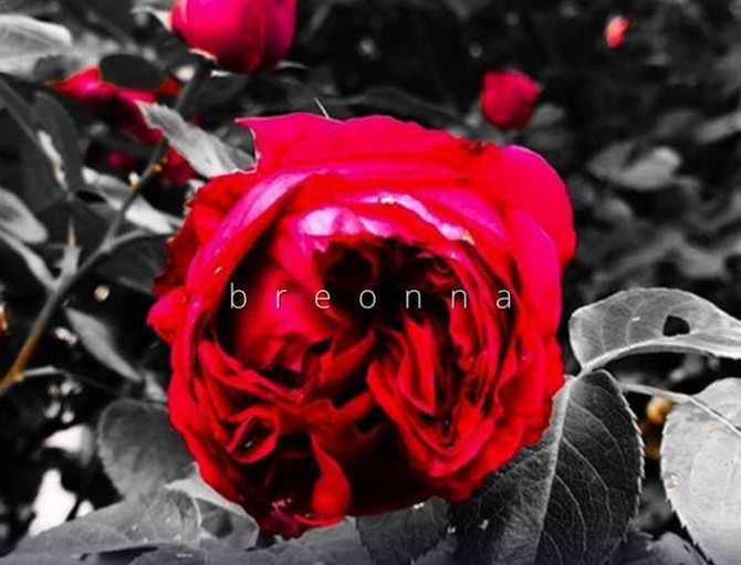 """DJ Nate Geezie and Dior Ashley Brown Link for """"Breonna"""" Single"""