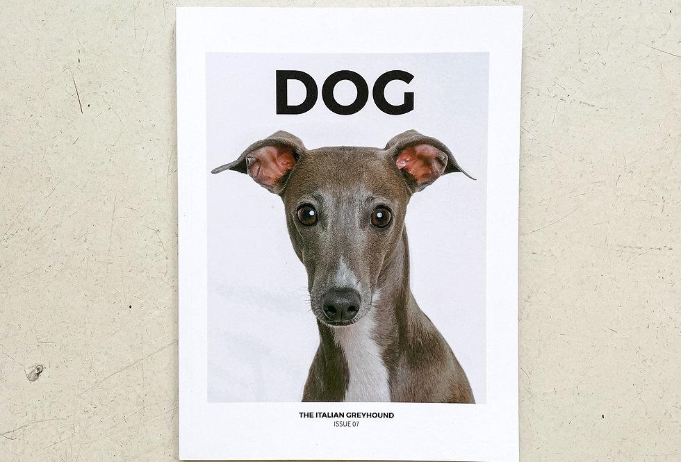 DOG No. 7 | The Italian Greyhound
