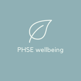 PHSE Wellbeing Sessions