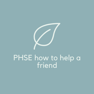 PHSE half day workshop how to help a friend