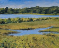 Scallop Pond June 2 10x12 201305