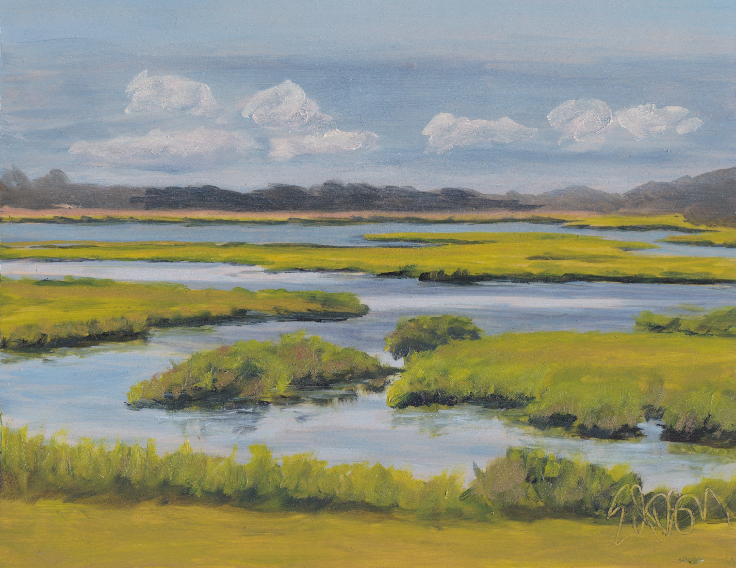 Marshes 8x10 201707