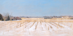Winter Cornfield 24x48 2006