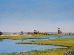 Orient Marshes 18x24 201306