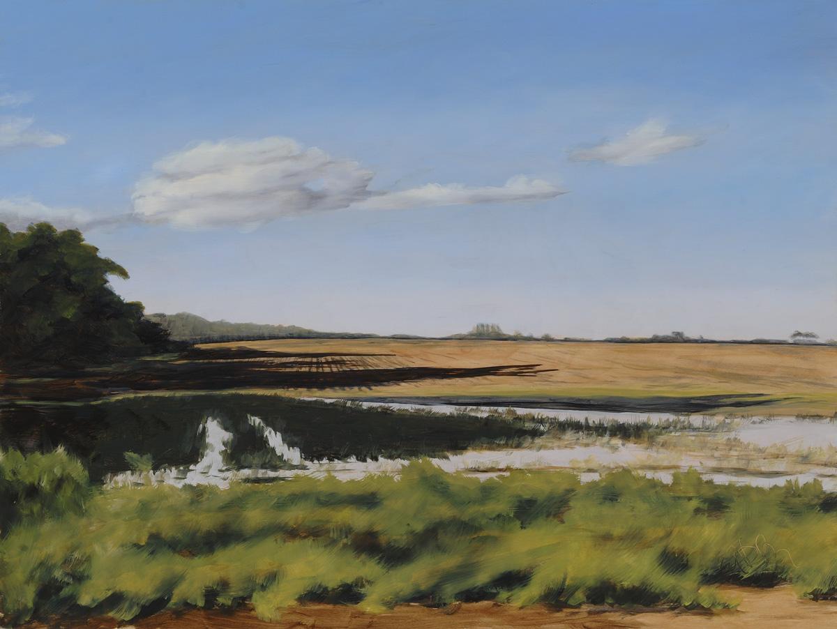 Field After Rain 18x24 201404