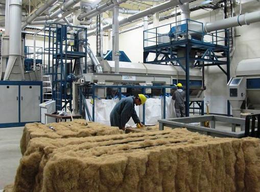 hemp factory.jpg