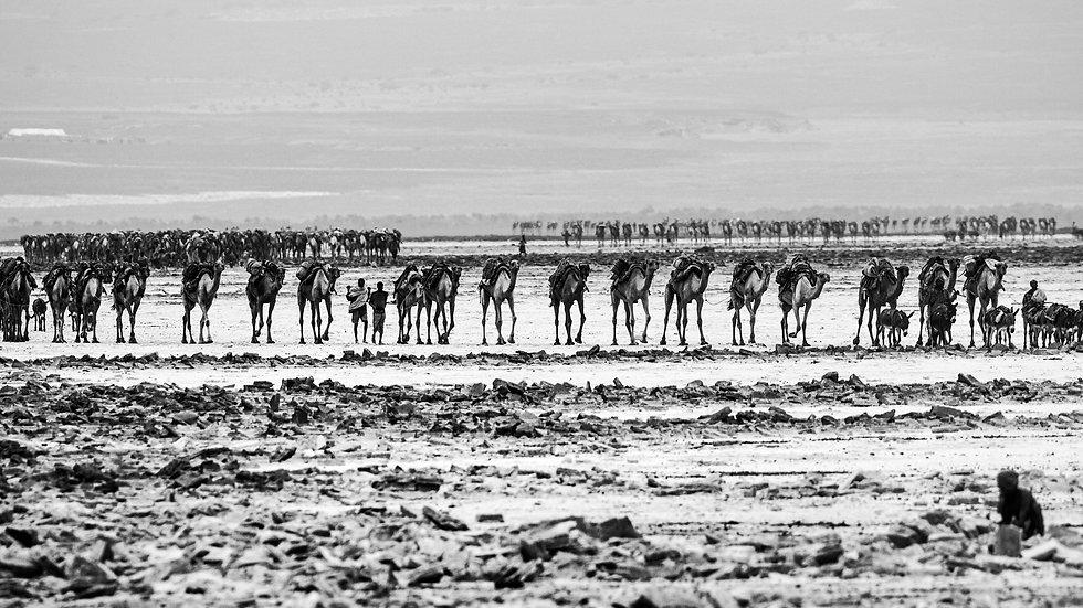 Danakil Desert, Ethiopia, Feb. 2014