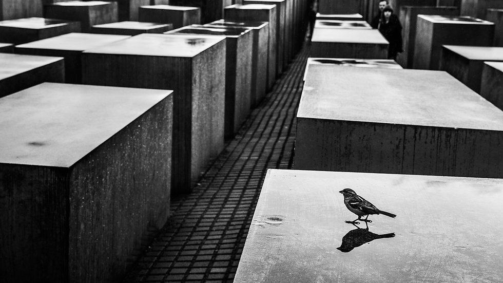 Berlin, Germany, May 2013