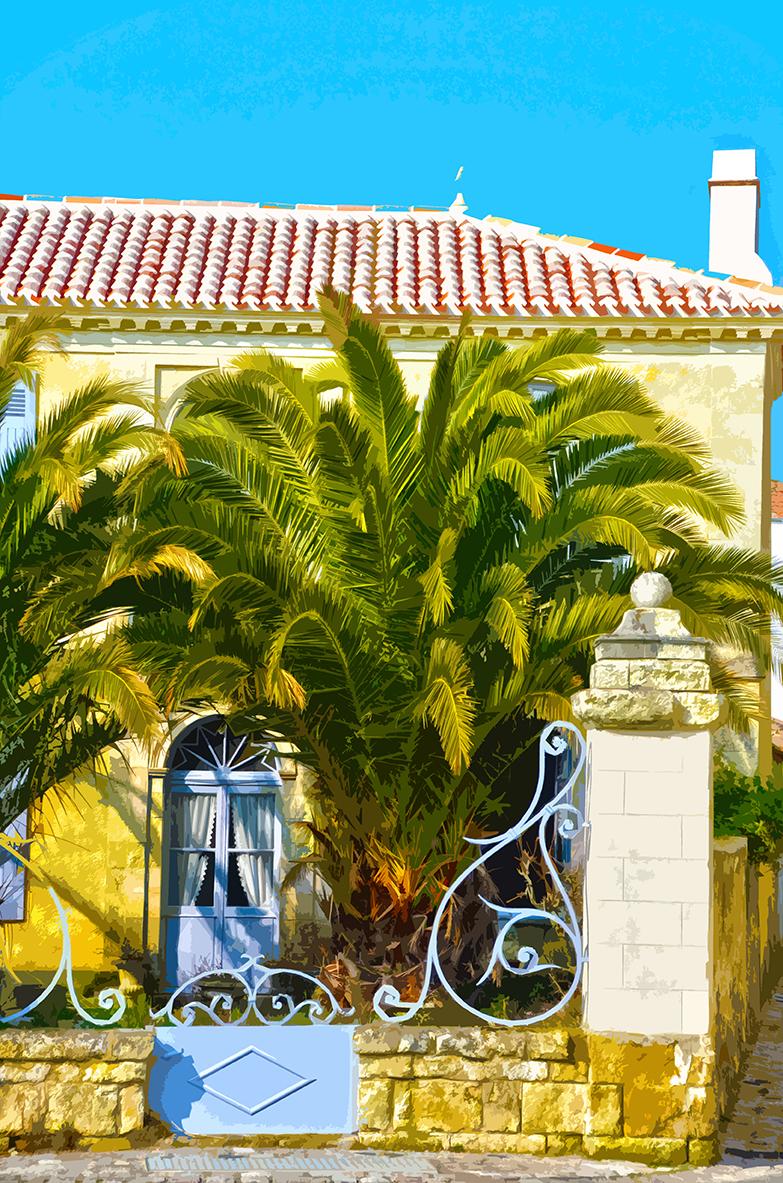 Maison aux palmiers