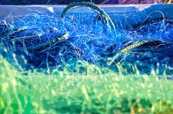 Filet bleu et vert
