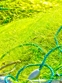 Filet jaune et cordage vert – 2