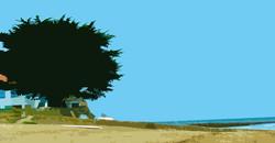 Arbre sur la plage – 2 – Le Petit Vi