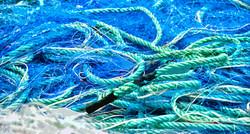 Filet bleu et cordage vert – 5