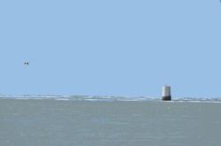 Bouée blanche et Kitesurf - 2