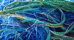 Filet bleu et cordage vert