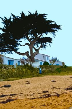 Portail bleu - Le Petit Vieil