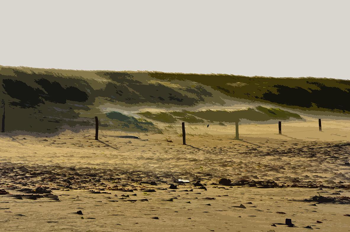 Vent sur la dune - Luzeronde