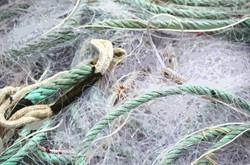 Filet blanc et cordage vert