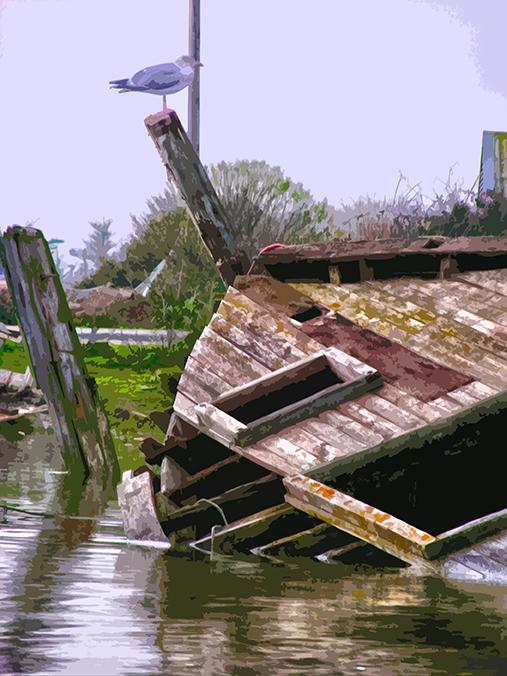 Cimetière de bateaux - 3