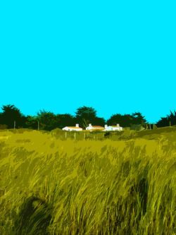Maisons sur la dune - Luzeronde
