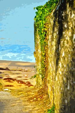 Mur plage des Souzeaux
