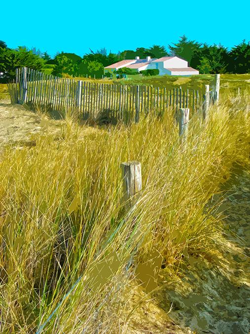 Maison sur la dune - Luzeronde