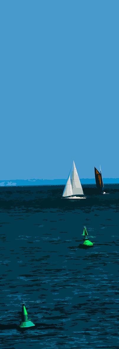 Bateaux blanc et noir et bouée verte