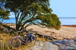 Vélos plage des Dames