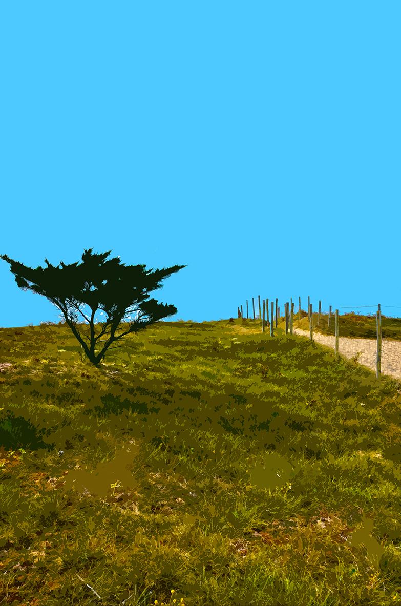 Buisson sur la dune - 3 - Luzeronde