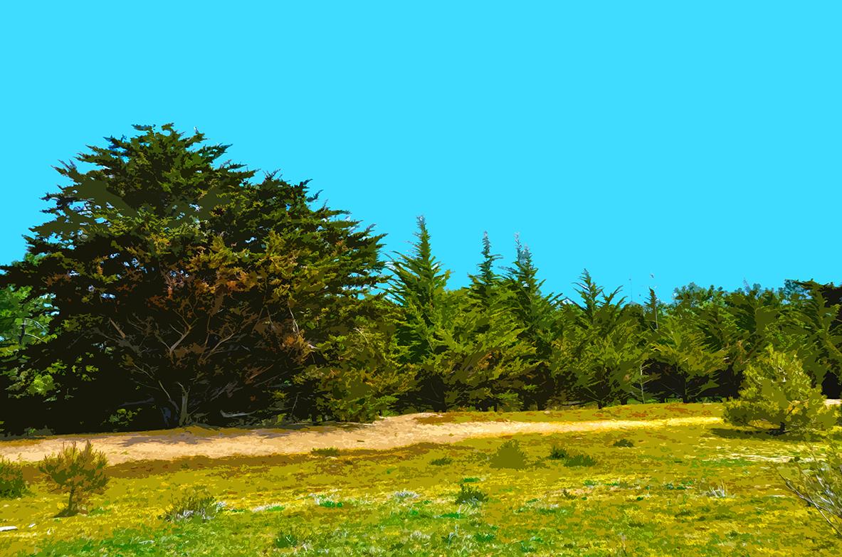 Dunes à la Fosse