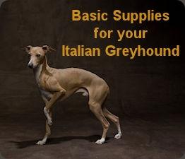 Basic supplies.jpg