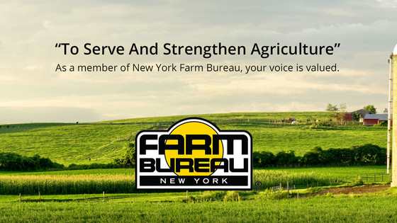 NYFB OFFERS SCHOLARSHIPS TO STUDENTS PLANNING AN AG FUTURE