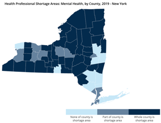 Blog Post 2: The Case for School Based Health Centers (SBHCs) in Rural New York State and the RSA Co