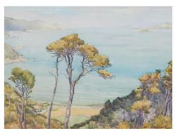 Christchurch Painter |